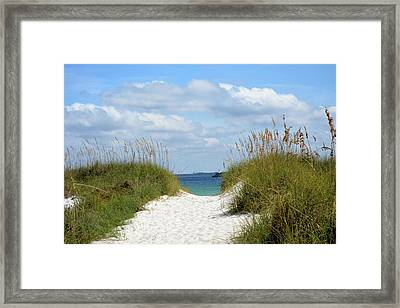 Trail To The Bay Framed Print by Tamra Lockard