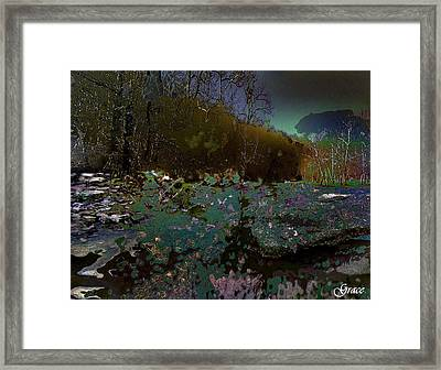 Trailing Along Framed Print by Julie Grace