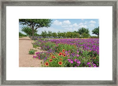Trailing Beauty Framed Print