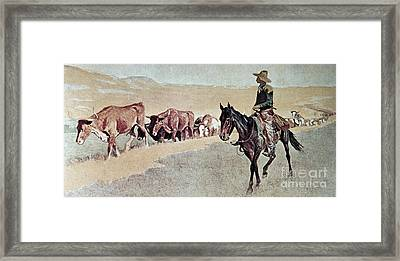 Trailing Texas Longhorns Framed Print by Frederic Remington