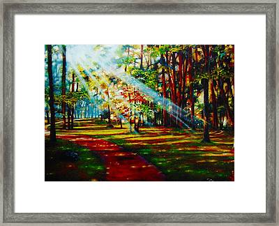 Trails Of Light Framed Print