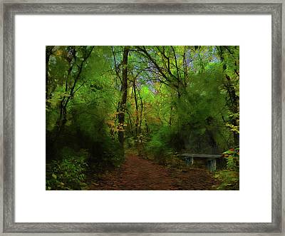 Trailside Bench Framed Print