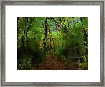 Trailside Bench Framed Print