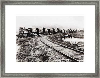 Train Of Huge Redwood Logs Framed Print by Everett