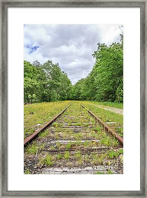 Train Tracks And Wildflowers Framed Print by Edward Fielding