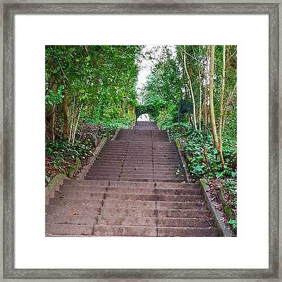 Training For My First Obstacle Course Framed Print by Dante Harker