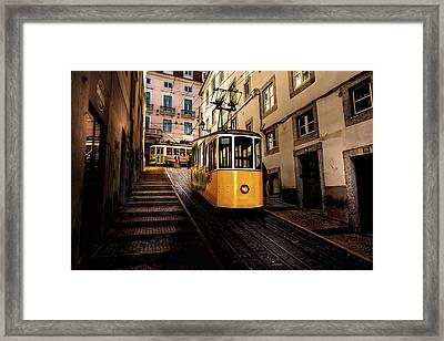 Trams Framed Print