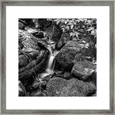 Tranquil Cascade - Bw Framed Print by Stephen Stookey