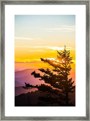 Tranquil Colors Vertical Framed Print by Shelby Young