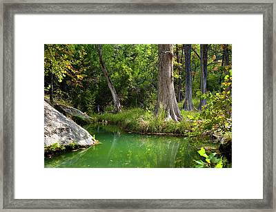 Tranquil Green Pool Framed Print by Mark Weaver