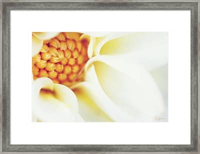 Tranquil Framed Print by Nancy  Coelho