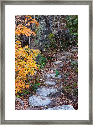 Lost Maples Tranquil Passage II Framed Print by Mike Brymer