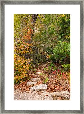 Lost Maples Tranquil Passage Framed Print by Mike Brymer