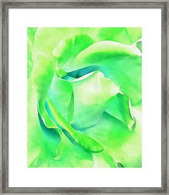 Tranquil Petals Framed Print by Krissy Katsimbras