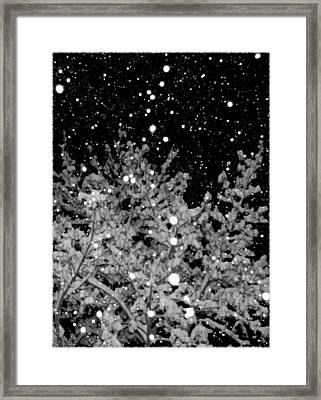 Tranquil Snowfall Framed Print