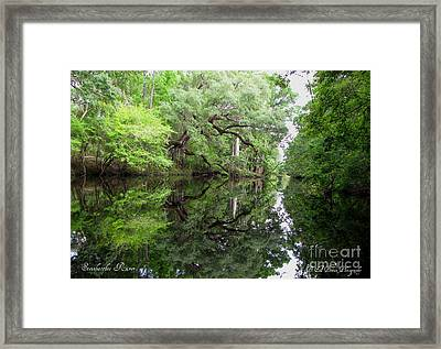 Framed Print featuring the photograph Tranquility by Barbara Bowen