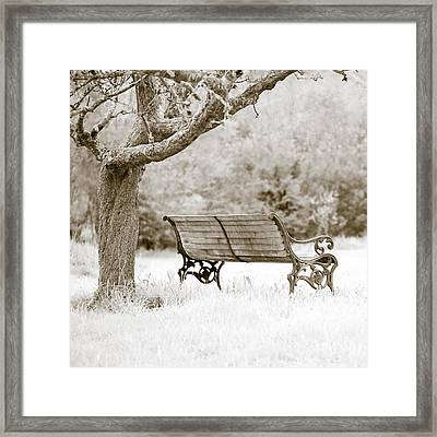 Tranquility Framed Print by Frank Tschakert
