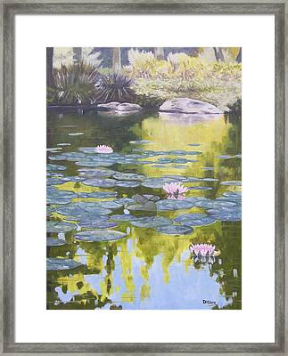 Tranquility IIi Furman University Framed Print