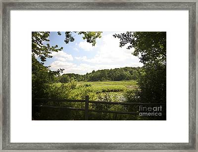 Tranquility Framed Print by Jeannie Burleson