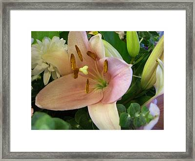 Tranquility Framed Print by Kimberly Morin