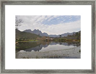 Tranquility Framed Print by Linda Ferreira