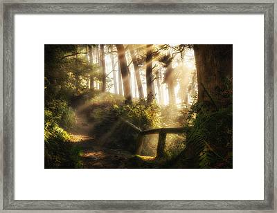 Tranquility Framed Print by Peter Acs
