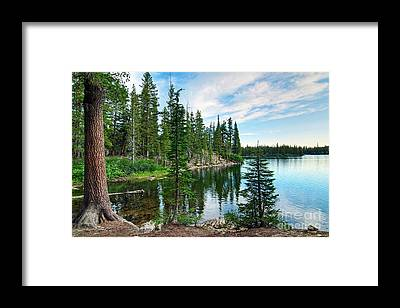 Lake Shore Framed Prints