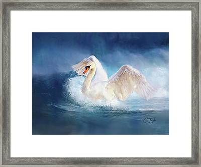 Transcendence Framed Print by Colleen Taylor