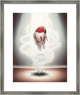 Transcendent Flight Framed Print by Amy S Turner