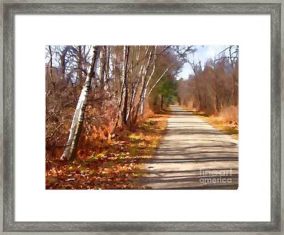 Transformed Framed Print by Betsy Zimmerli