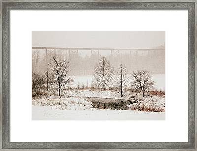 Transformed Framed Print by Cheryl Helms
