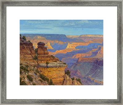 Transient Light Framed Print