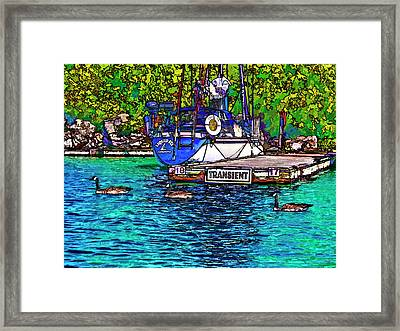 Transients Cartoon Framed Print by Steve Harrington