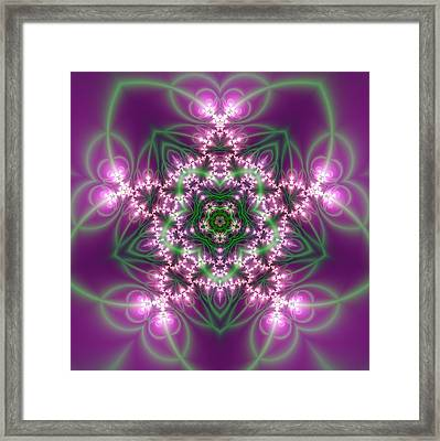 Transition Flower 5 Beats Framed Print
