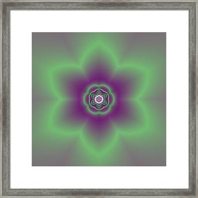 Transition Flower 6 Beats 2 Framed Print