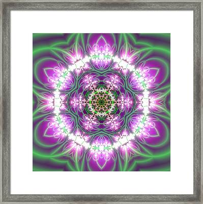 Transition Flower 6 Beats 3 Framed Print
