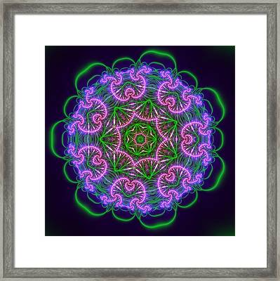 Transition Flower 7 Beats Framed Print