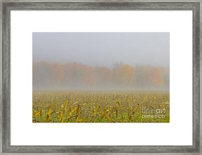 Transitioning Framed Print
