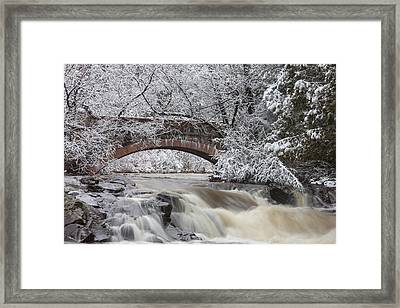 Transitions Framed Print by Mary Amerman