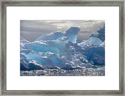 Translucent Iceberg Framed Print by Ira Meyer