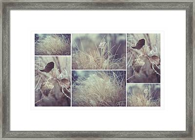 Translucent Reality. Polyptych Framed Print