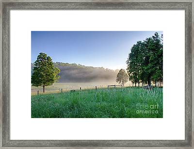 Translucent Sunrise Framed Print by Bryan Freeman