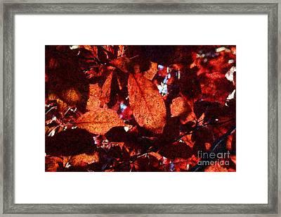 Transparence 14 Framed Print by Jean Bernard Roussilhe