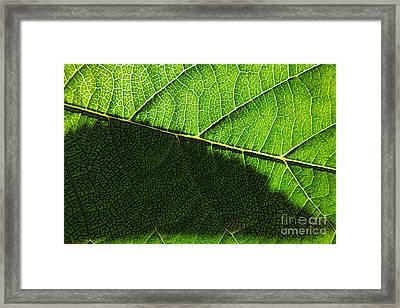 Transparence 20 Framed Print by Jean Bernard Roussilhe