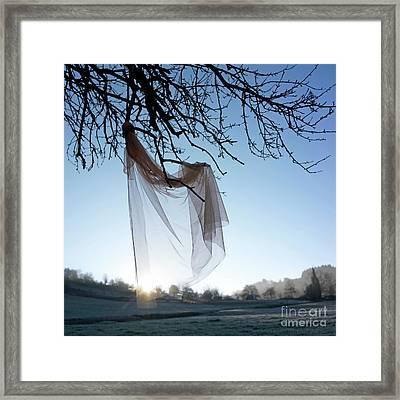 Transparent Fabric Framed Print