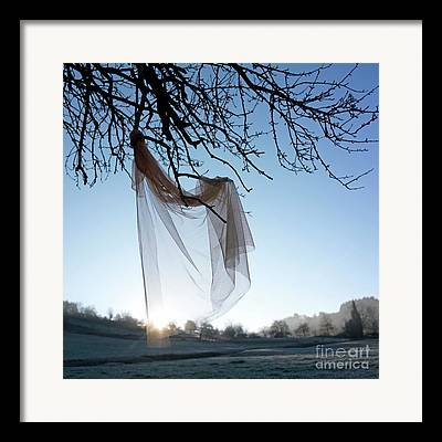 Transparent Fabric Framed Prints