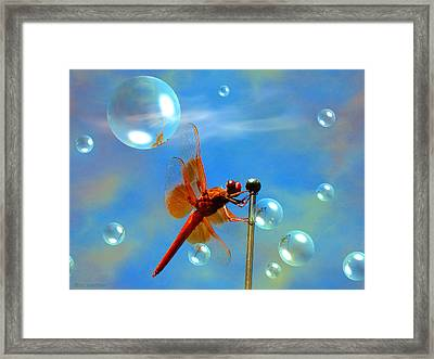 Transparent Red Dragonfly Framed Print by Joyce Dickens