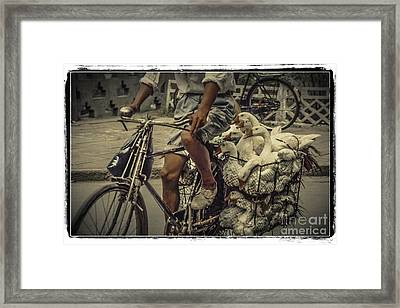 Framed Print featuring the photograph Transport By Bicycle In China by Heiko Koehrer-Wagner