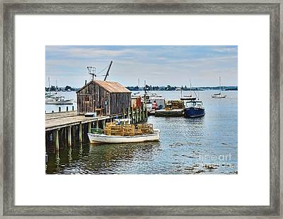Trapped Framed Print by Patrick Fennell