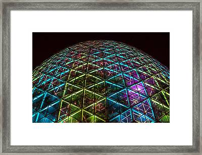 Trapped Within Framed Print